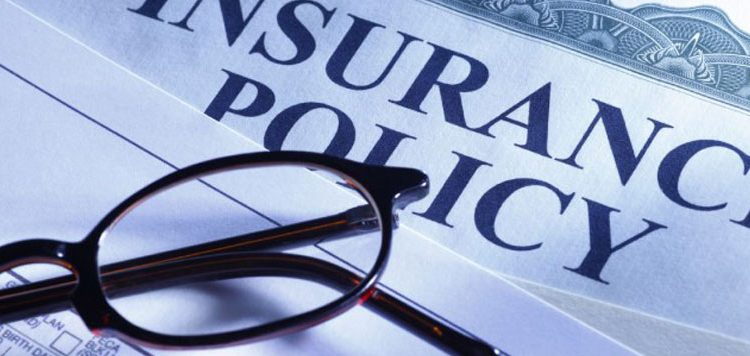 Any type of Insurance you need, we provide with excellent support